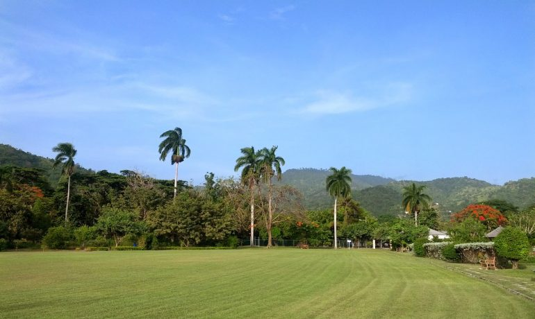 Park in Jamaica